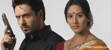 Waaris on Zee - SarKar Raj on Television ?